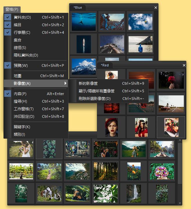 acdsee 10 build 225 繁體 中文 版